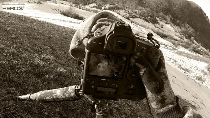 "Effetto ""Action-cam""! - Wildlife addicted since 1976"